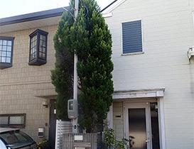大阪の植木手入れ作業前