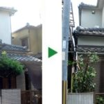 キンモクセイ・マキ・サザンカの剪定~奈良県生駒市~