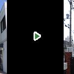 8mのトウカエデを4mの高さまで剪定 奈良県奈良市