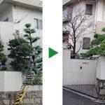 広いお庭のお手入れ~ミカンの木などをきつめに剪定 大阪府四条畷市