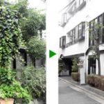 マンションエントランスの植木のメンテナンス 大阪市旭区