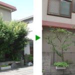 定期メンテナンスを植木屋に任す利点 大阪市旭区
