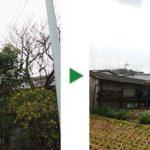 高さ10mのクヌギ、ツバキ、サザンカなどの植木の伐採~京都府宇治市~