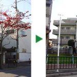 ホームページからの新規のご依頼~高槻市にて植木の剪定~大阪府高槻市