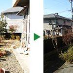 サルスベリやモミジ、カシの剪定~大阪府吹田市~