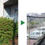 マンションのオーナー様より植木の剪定と草刈りのご依頼 大阪府茨木市