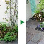 花壇へ花の植栽のご依頼~宿根イベリス、マリーゴールドなど~大阪市阿倍野区
