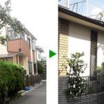 大阪市都島区 社宅のお庭の草刈りと植木剪定