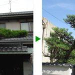 大阪市旭区 マツのあるお庭の剪定