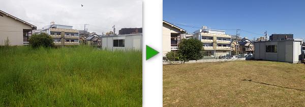 広さ100㎡のお庭の草刈り事例
