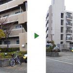 アラカシを剪定して2階廊下の日当たりを改善 奈良市マンション