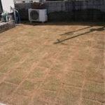 コストを抑えた芝張り工事|細かい雑草だらけの庭をキレイにしたい 大阪府堺市北区