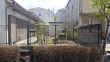 手入れ後の庭の写真