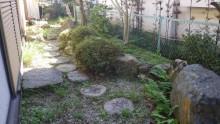 雑草対策前