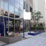 マンション植栽の害虫対策と落ち葉対策のための剪定 奈良県奈良市