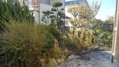 作業前の庭