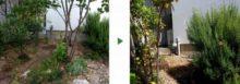 ご自宅のお庭に自動散水ホースを設置した事例 作業前後