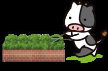 低木刈込中牛
