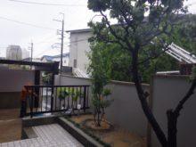 大阪市此花区の自宅 ソヨギ植栽後のお写真