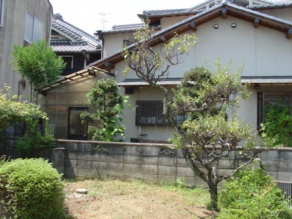 奈良市伐採後