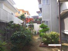大阪市天王寺区の空き家の庭 剪定後