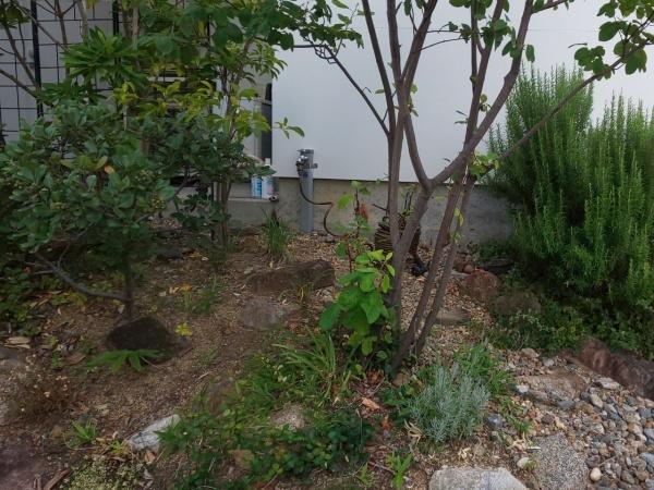 ご自宅のお庭に自動散水ホースを設置した事例 作業前
