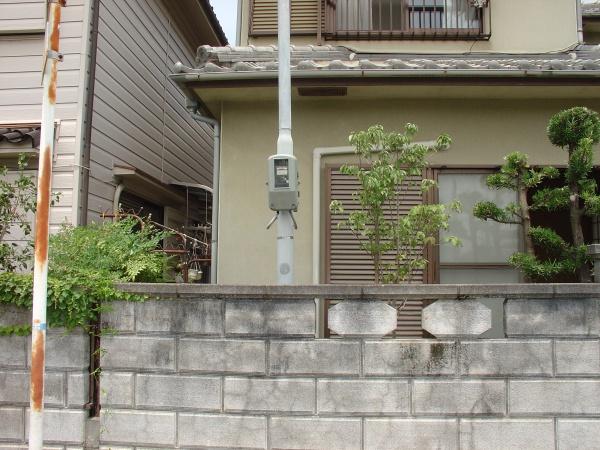 大阪植栽作業後