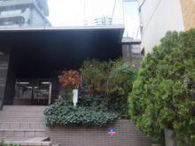 ペンシルロッケットの植木を会社の玄関口に植えた事例写真 施工前