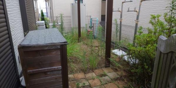 豊中市の除草&s除草剤散布の事例 施術前