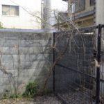 マンションの伐採作業|フェンスに絡んだ植木を伐採 大阪府堺市堺区