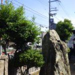 神社の剪定作業|サザンカを出来るだけ小さく剪定 大阪府大阪市大正区