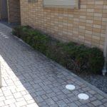 枯れてきた庭木の植え替え 管理のしやすい庭木に植え替え 大阪府大阪市西区