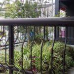 剪定・植栽作業|形を整え剪定と手入れが少なくて済む植木 大阪府大阪市福島区