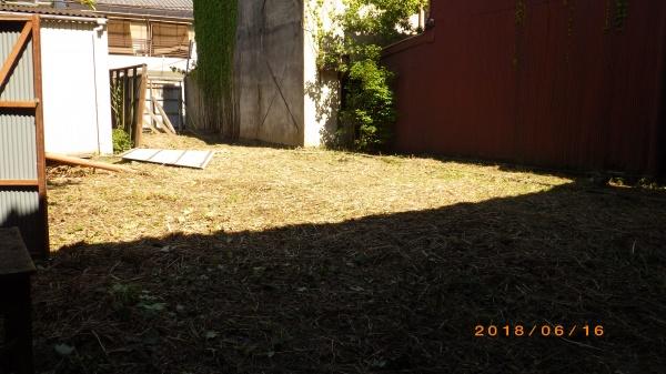 植木庭木剪定