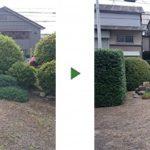 ウバメガシの生垣剪定を中心に100㎡のお庭の植木の手入れと草刈り 大阪府堺市中区