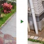 シマトネリコと芝生の撤去|花壇をまっさらにしたい 和歌山県和歌山市