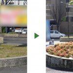固まる土の撤去と植栽|花壇の表面が割れて汚い 大阪府堺市の店舗