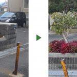 植栽の植え替え|部分的に枯れて見栄えが悪い 大阪府堺市堺区のマンション