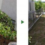 庭木を撤去して芝生にしたい|いらない木が多く自分でやるのが大変 大阪市西成区