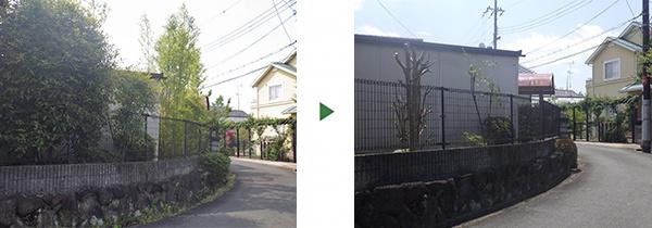 竹伐採前後