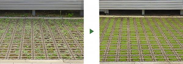 駐車場 緑化ブロック