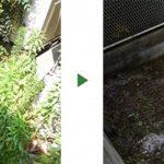 マンション専用庭の雑草を何とかしたい!草刈りと除草剤散布 吹田市