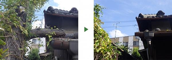 撤去before-after