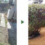 土がむき出しでデコボコになったお庭40㎡を芝生でカバー 大阪府門真市