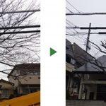 12mのサクラの木が電線に接触している 大阪府寝屋川市