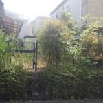 クロガネモチの剪定など空き家の庭手入れ 奈良県大和郡山市