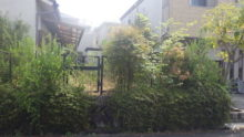 手入れ前の空家の庭