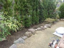 作業前の花壇と生垣