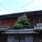 狭い庭のマキの剪定 大阪府大阪市旭区