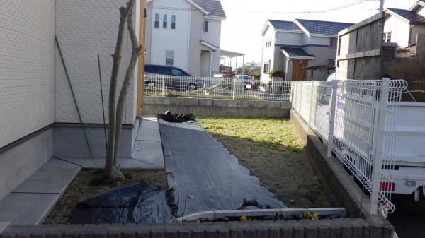高麗芝 植え付け前